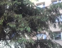 Morizon WP ogłoszenia | Mieszkanie na sprzedaż, Bytom Stroszek, 63 m² | 0542