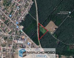 Morizon WP ogłoszenia   Działka na sprzedaż, Ozorków Leśna, 8074 m²   4939