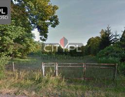 Morizon WP ogłoszenia | Działka na sprzedaż, Czarnów, 2400 m² | 2618