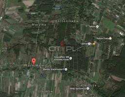 Morizon WP ogłoszenia | Działka na sprzedaż, Prace Małe, 17000 m² | 1031