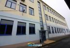 Morizon WP ogłoszenia | Centrum dystrybucyjne na sprzedaż, Świdnica, 4417 m² | 6277