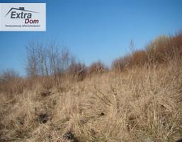 Morizon WP ogłoszenia | Działka na sprzedaż, Nowogard, 5000 m² | 5955