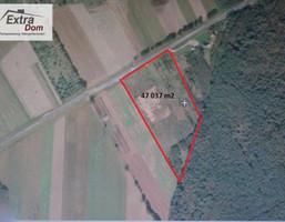 Morizon WP ogłoszenia   Działka na sprzedaż, Goleniów, 45000 m²   6109