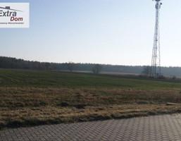 Morizon WP ogłoszenia | Działka na sprzedaż, Osina, 20000 m² | 6035