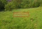 Morizon WP ogłoszenia | Działka na sprzedaż, Golkowice, 5900 m² | 0243