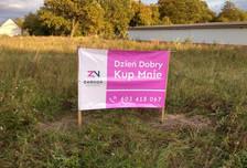 Działka na sprzedaż, Dąbroszyn, 6700 m²
