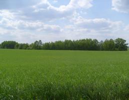 Morizon WP ogłoszenia | Działka na sprzedaż, Zielona Góra, 59000 m² | 1654
