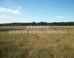 Morizon WP ogłoszenia | Działka na sprzedaż, Smogolice, 1000 m² | 8796