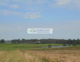Morizon WP ogłoszenia | Działka na sprzedaż, Małkowo, 1300 m² | 2394