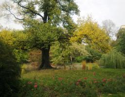 Morizon WP ogłoszenia | Mieszkanie na sprzedaż, Poznań Grunwald, 50 m² | 3399