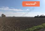 Morizon WP ogłoszenia | Działka na sprzedaż, Białęgi, 9000 m² | 7565