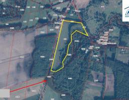 Morizon WP ogłoszenia   Działka na sprzedaż, Parsowo, 75600 m²   2931