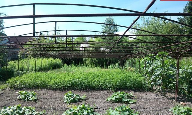 Działka na sprzedaż <span>Pruszkowski, Piastów</span>