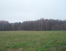 Morizon WP ogłoszenia | Działka na sprzedaż, Konary, 2500 m² | 3339