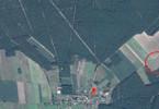 Morizon WP ogłoszenia | Działka na sprzedaż, Lipno, 9800 m² | 9193