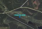 Morizon WP ogłoszenia | Działka na sprzedaż, Dęborogi Dęborogi, 41700 m² | 8399