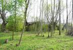Morizon WP ogłoszenia | Działka na sprzedaż, Rajszew, 3000 m² | 7863