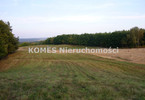 Morizon WP ogłoszenia | Działka na sprzedaż, Cerkiewnik, 3255 m² | 9266