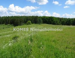 Morizon WP ogłoszenia | Działka na sprzedaż, Cerkiewnik, 4659 m² | 8944