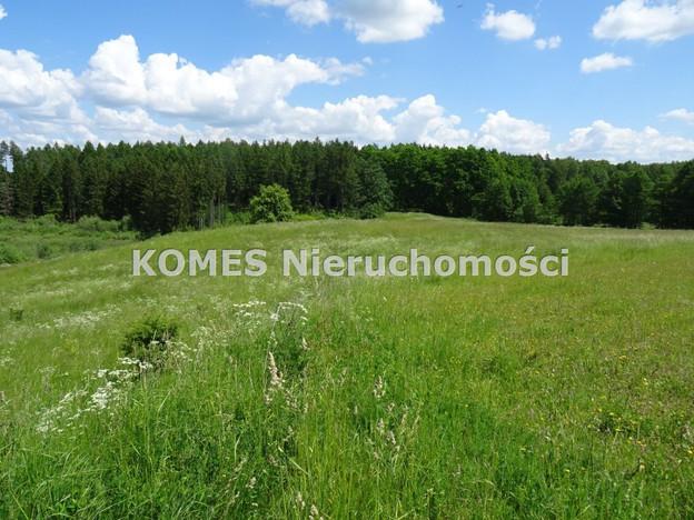 Morizon WP ogłoszenia   Działka na sprzedaż, Cerkiewnik, 4659 m²   8944