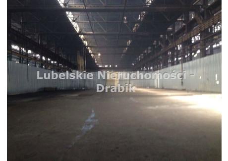 Magazyn do wynajęcia <span>Lublin M., Lublin, Hajdów</span> 1