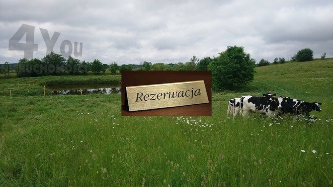 Morizon WP ogłoszenia | Działka na sprzedaż, Żydowo, 12900 m² | 3455