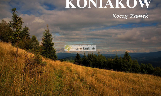 Działka na sprzedaż <span>Cieszyński (pow.), Istebna (gm.), Koniaków</span>