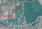 Morizon WP ogłoszenia | Działka na sprzedaż, Kostrzyn, 23935 m² | 3813