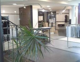 Morizon WP ogłoszenia | Obiekt na sprzedaż, Poznań Ogrody, 1100 m² | 9234