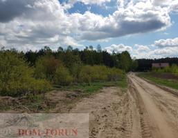 Morizon WP ogłoszenia | Działka na sprzedaż, Lubicz Dolny, 26981 m² | 0500