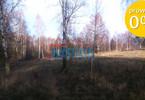 Morizon WP ogłoszenia | Działka na sprzedaż, Pajtuny, 3000 m² | 1651