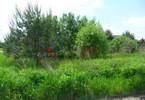 Morizon WP ogłoszenia | Działka na sprzedaż, Rozalin, 1060 m² | 8803