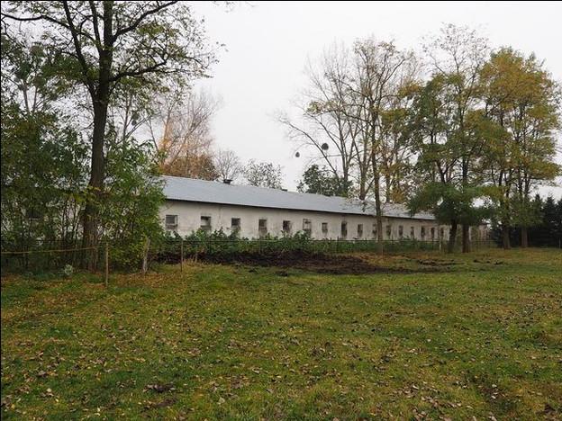 Morizon WP ogłoszenia | Gospodarstwo rolne na sprzedaż, Biskupiec, 1600 m² | 1262