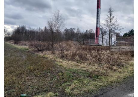 Działka na sprzedaż <span>Wrocław, Fabryczna, Osiniec, Osiniec</span> 1