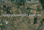Morizon WP ogłoszenia   Działka na sprzedaż, Bratoszewice, 31582 m²   2624