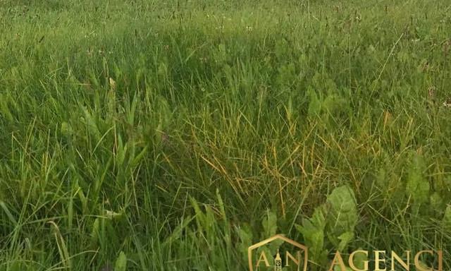 Działka na sprzedaż <span>Białostocki, Wasilków, Nowodworce</span>