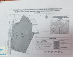 Morizon WP ogłoszenia | Działka na sprzedaż, Olszanka gm.Zabłudów, 24000 m² | 2608