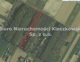 Morizon WP ogłoszenia | Działka na sprzedaż, Strzeszkowice Duże, 5400 m² | 4046