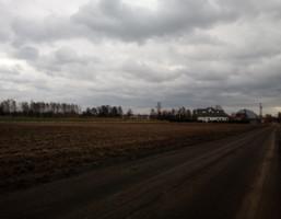 Morizon WP ogłoszenia | Działka na sprzedaż, Boryszew, 20000 m² | 3651