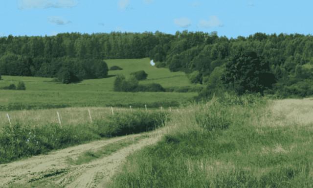 Działka na sprzedaż <span>Ostródzki (pow.), Miłakowo (gm.), Miłakowo</span>