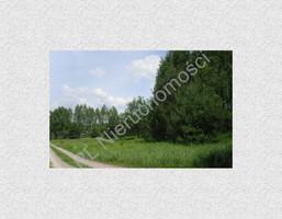 Morizon WP ogłoszenia | Działka na sprzedaż, Skuły, 13556 m² | 2259