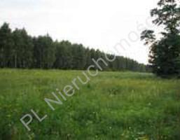 Morizon WP ogłoszenia | Działka na sprzedaż, Skuły, 11400 m² | 1401