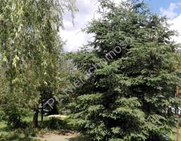 Morizon WP ogłoszenia | Działka na sprzedaż, Grabce-Towarzystwo, 3900 m² | 6742