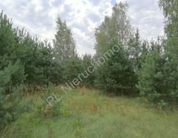 Morizon WP ogłoszenia | Działka na sprzedaż, Kałuszyn, 8500 m² | 7778