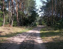 Morizon WP ogłoszenia | Działka na sprzedaż, Stanisławów, 2900 m² | 9252