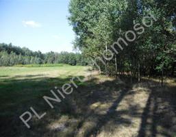 Morizon WP ogłoszenia | Działka na sprzedaż, Cyganka, 5300 m² | 7307