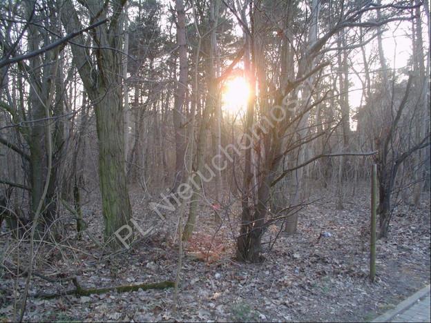 Morizon WP ogłoszenia   Działka na sprzedaż, Brwinów, 1333 m²   7589