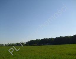 Morizon WP ogłoszenia | Działka na sprzedaż, Szamoty, 1648 m² | 4617