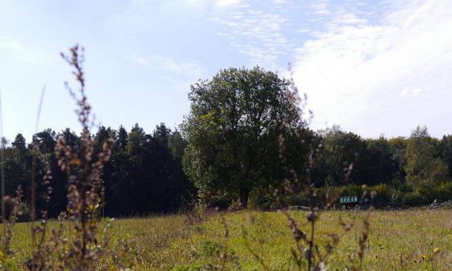 Działka na sprzedaż <span>Wejherowski, Wejherowo, Łężyce, Dębowa</span>