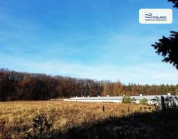 Morizon WP ogłoszenia | Działka na sprzedaż, Nawojowa Góra, 49400 m² | 6357